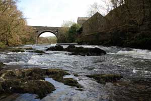 Alltcafn Woollen Mill and River Teifi